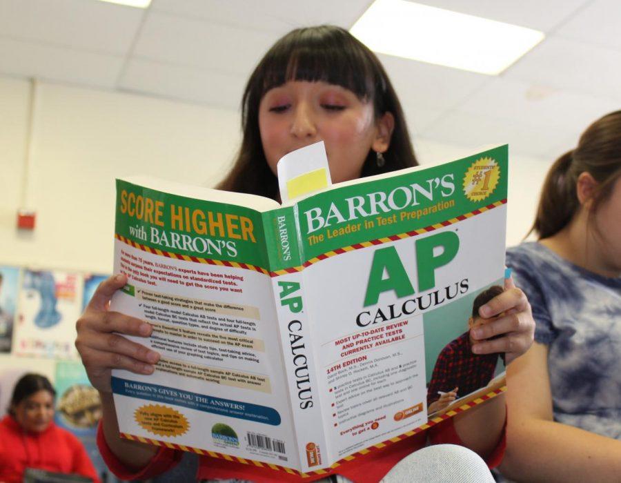 Senior Melanie Pinzon studies for an AP test. Photo by Gillian Hodgden.
