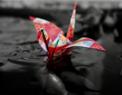 Matsumoto took a photo of an origami swan which also represents Japanese culture.  Photo courtesy of Ally Matsumoto.